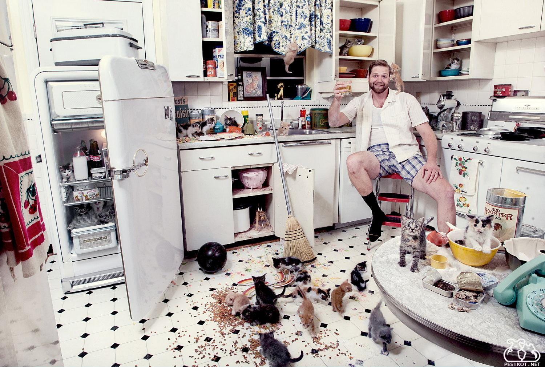 На кухне картинки смешные, после прикольные картинки